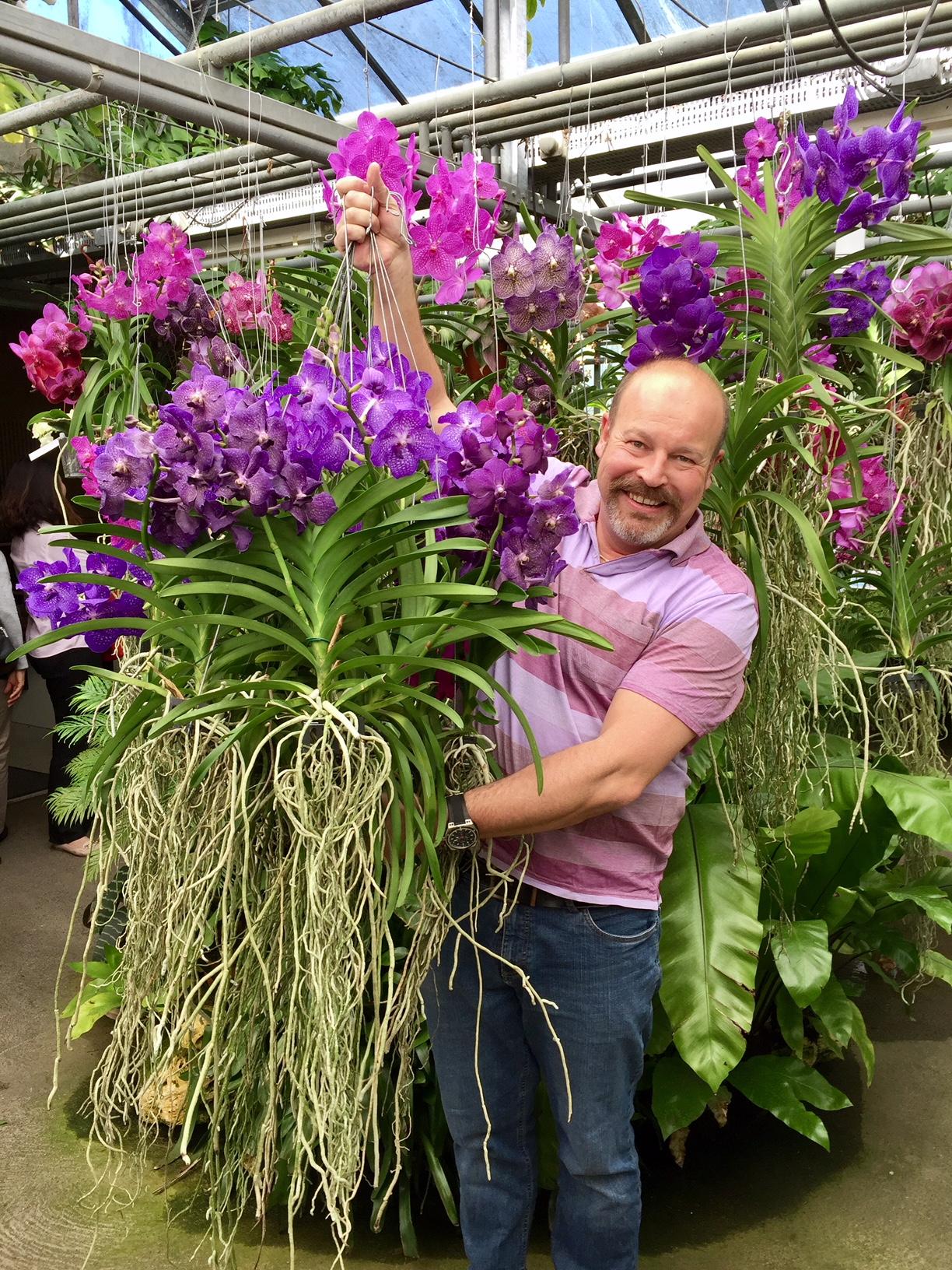Les Vandas Orchidarium Ch
